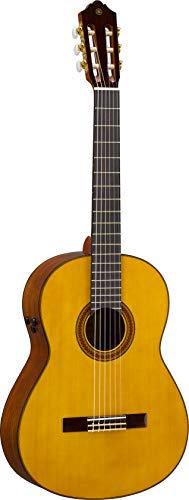 Yamaha CG-TA Nylon String TransAcoustic Guitar with Chorus and Reverb