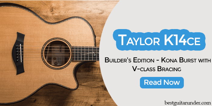Taylor K14ce Builder's Edition review