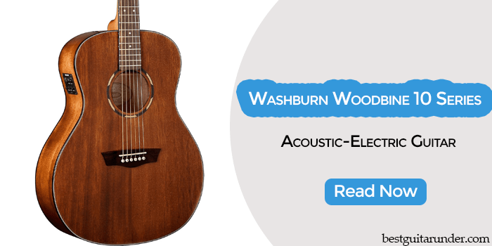 Washburn Woodbine 10 Series review