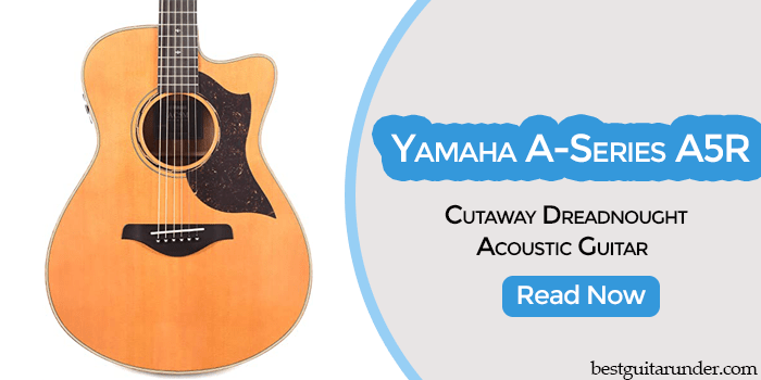 Yamaha A-Series A5R Cutaway review