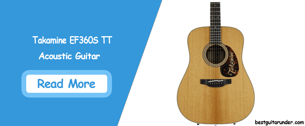 Takamine EF360S TT Thermal Top Acoustic-Electric Guitar