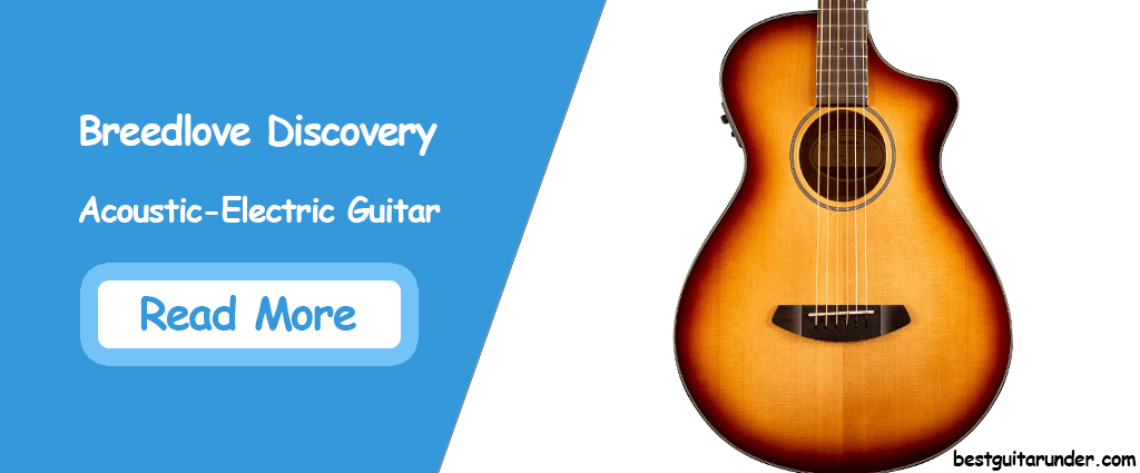 Breedlove Discovery Acoustic Electric Guitar Review